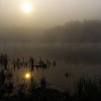 Туманное отражение :: Анатолий Иргл