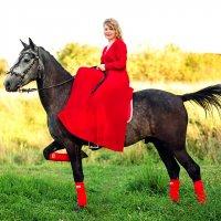 на лошадке :: Ольга Челышева