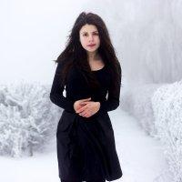 **** :: Денис Колесников