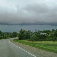 Скоро грянет буря... :: Юлия Бабитко