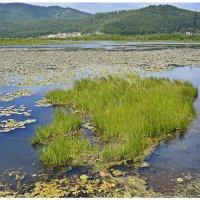 Природа Байкала :: Любовь Чунарёва