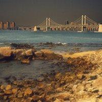 Бриллиантовый мост.Пусан Южная Корея :: Евгений Подложнюк