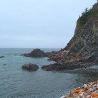 Суровая красота Крайнего Севера. Лето на Шантарских островах. Остров Большой Шантар. :: Vladimir 070549