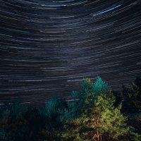Звездная ночь августа. :: Эдуард Сычев