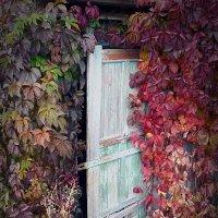 Дверь в осень :: Олег Назаров
