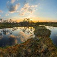 Путь, вдоль бездонных зеркал болота. :: Фёдор. Лашков