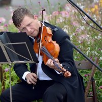Музыкант играл на скрипке -я в глаза ему смотрел :: kirm2 .