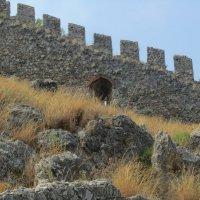 крепостная стена :: tgtyjdrf