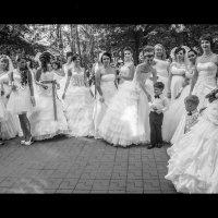 Парад невест 2015 :: Юлия