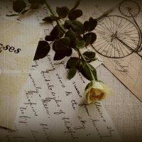 """серия """"Письма к Розе"""" :: ксения магина"""