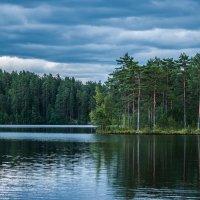 Лесное озеро :: Михаил Вандич