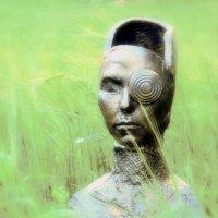 Портрет c ромашкой... :: Lilly