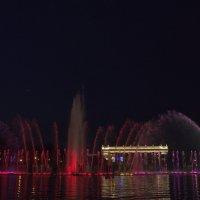 фонтан с красным и фиолетовым :: Александра