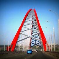 Бугринский мост. Новосиб :: Ольга Кондратова