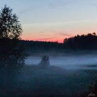 туман :: Nastie Zaytceva