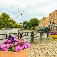 Городские цветы. :: юрий Амосов