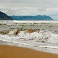 Море :: Tatyana Belova