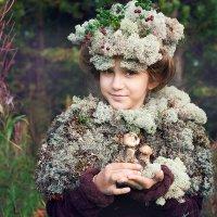 Сказки старого леса :: Анна Ершова
