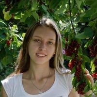 Красная черёмуха :: Andrey65