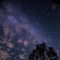 темнота и блеск :: Сергей Урунбаев
