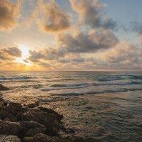 Средиземное :: Aaron Gershon