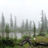 Лазурное в тумане. :: Ник Васильев