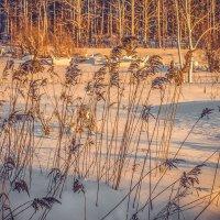 Зимним вечером :: Ivan Lukkonen