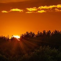 Солнце спряталось за лесом... :: Анатолий Клепешнёв