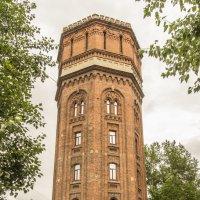 Башня :: Дмитрий Потапкин