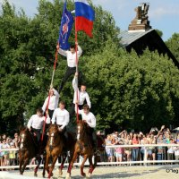 пирамида на лошадк-ах :: Олег Лукьянов