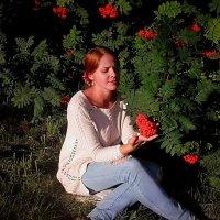 Рябина красная :: Елена Бушуева