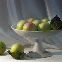 Яблочками угощайтесь. С праздником! :: Алина