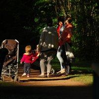 закат в парке :: linnud
