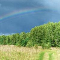 Просто радуга :: Ринат Валиев