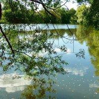 Большой пруд. :: Чария Зоя