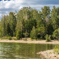 на Рузском водохранилище :: Лариса Батурова
