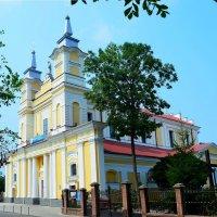 Собор Св. Софии в Житомире :: Ростислав