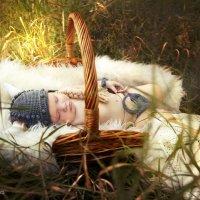 """""""Сон маленького викинга"""" :: Анна Кулешова"""