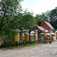 Дома для пчёл. :: Oleg4618 Шутченко