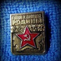 Готов к защите :: Андрей Заломленков