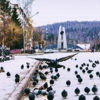 На подлете) :: Pavel Rakhimberdiev