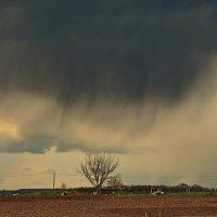 Кажется, дождь собирается... :: Валентина Данилова