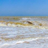 Так вот ты какой... Таганрогский залив!!! :: Юлия Бабитко