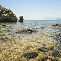 рифы Средиземноморья :: Андрей ЕВСЕЕВ