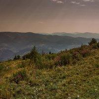 Карпаты 4 (2015) :: Елена Галахад