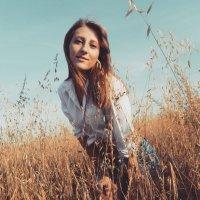 Лето в поле :: Ирина Михневич