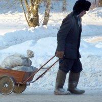 О зимних радостях :: Валерий Талашов