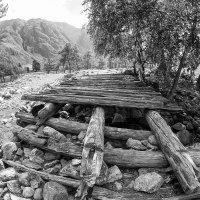 Уставший алтайский мостик :: Александр Решетников