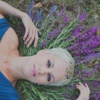 полевая фантазия :: юлия соколова
