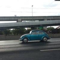 Бангкокский жук :: Александр